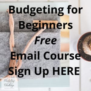 Are you wondering where all your money goes every month? Do you want to feel more in control of what you earn? Try my free email course today. I cover all the need to knows about budgeting, haggling for better deals and saving money in the long term. Start saving a fortune today! #budget #monthlybudget #savemoney