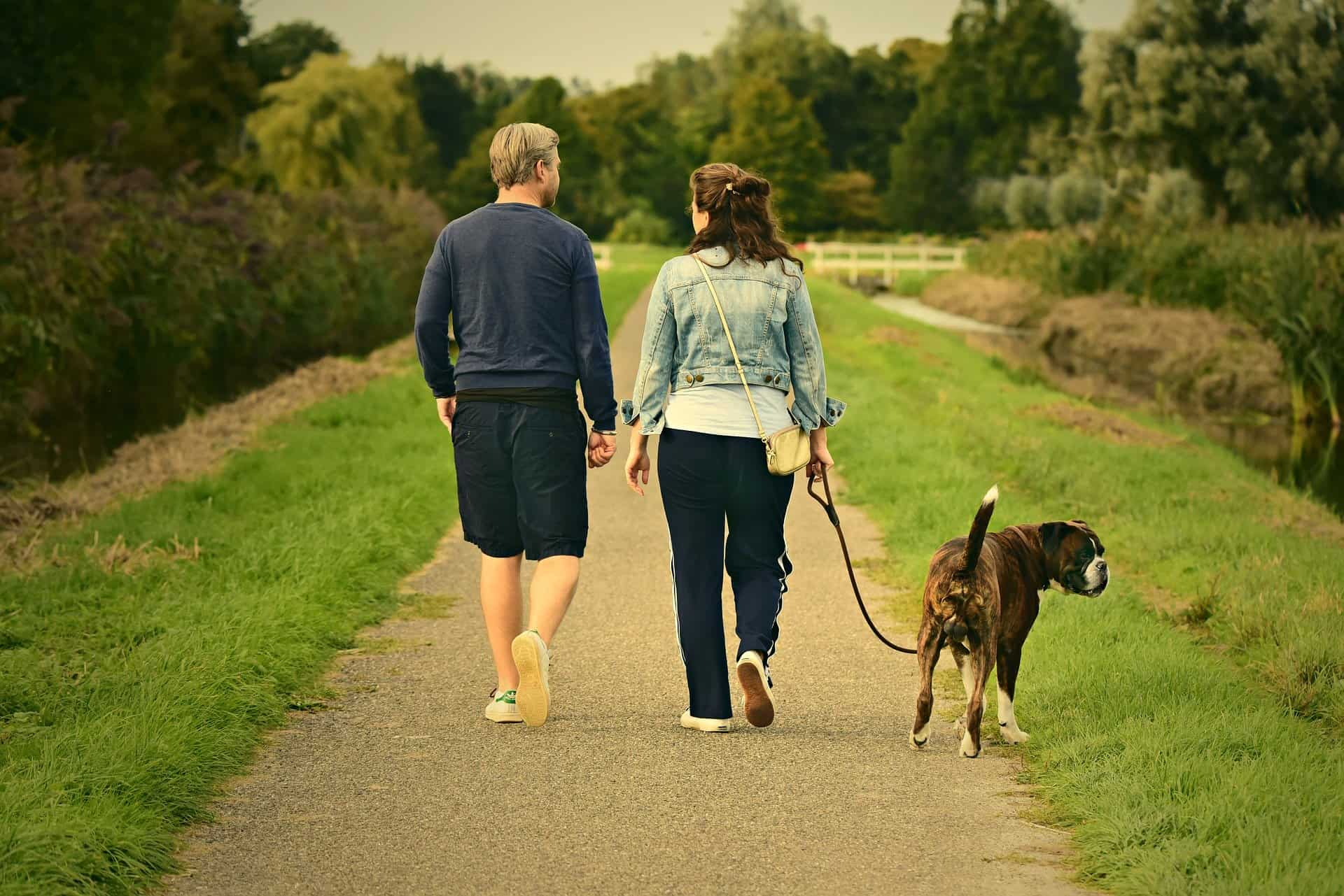 Walking more can save you loads of cash and improve your overall health