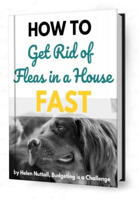 how to get rid of fleas in a house fast ebook